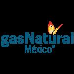 Cobra más de 40 servicios distintos como GAS NATURA